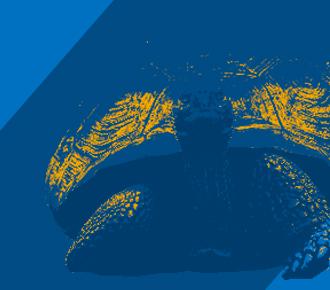 Fotografia de um retrovisor de um carro, no espelho se vê uma tartaruga. Representa a verdade que é apresentada sobre os contadores de impressão.