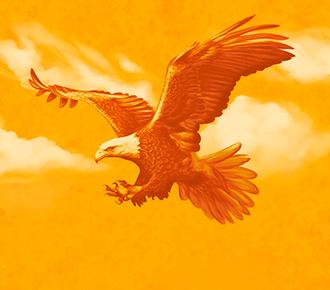 Ilustração de uma águia, que representa o símbolo do ConCEJ.